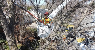 A CUPE 21 member completing forestry work in Regina. Photo credit: Barry Rud/Fire Cube Video